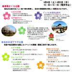 150404kitamotosakura