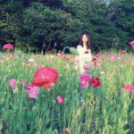 2016_5_22_poppy(3)_1000